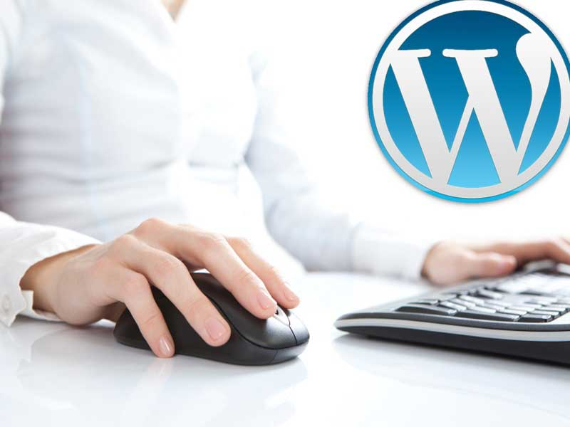 5 Reasons to the Switch to WordPress Web Design