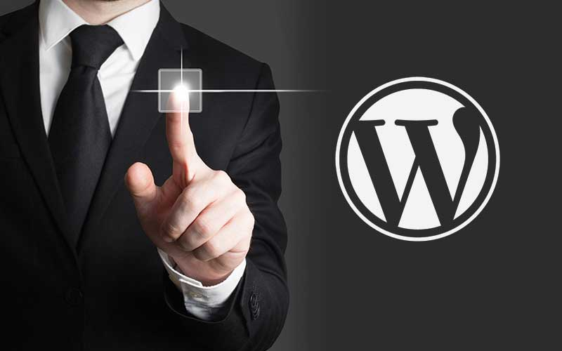 Why WordPress Web Design Has Been Embraced Worldwide