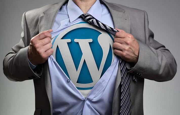 WordPress for Web Design: Taking WordPress Beyond a Blogging Platform