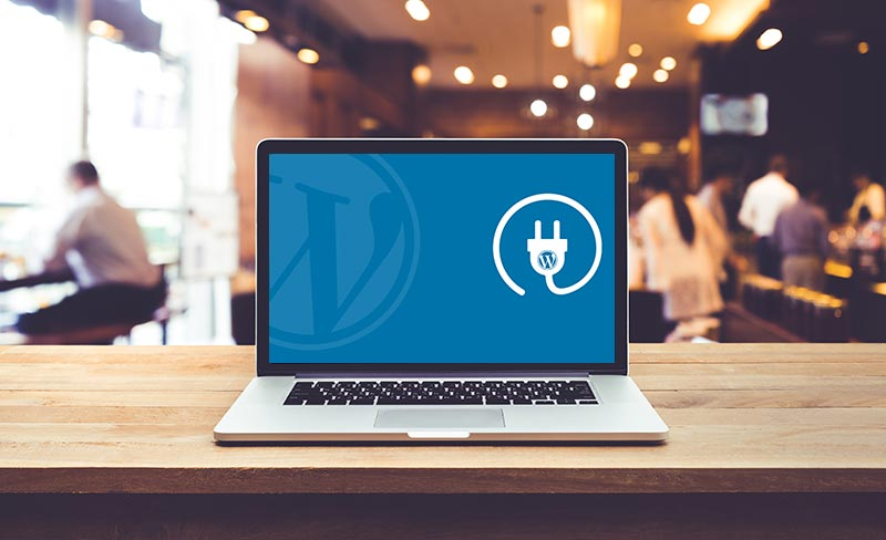 How to choose the best WordPress plugin for your business website